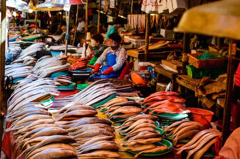 busanfishmarket