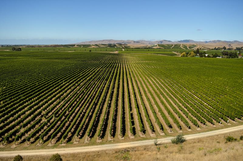 wineryviews